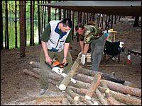 Заготовка дров / фото: Great