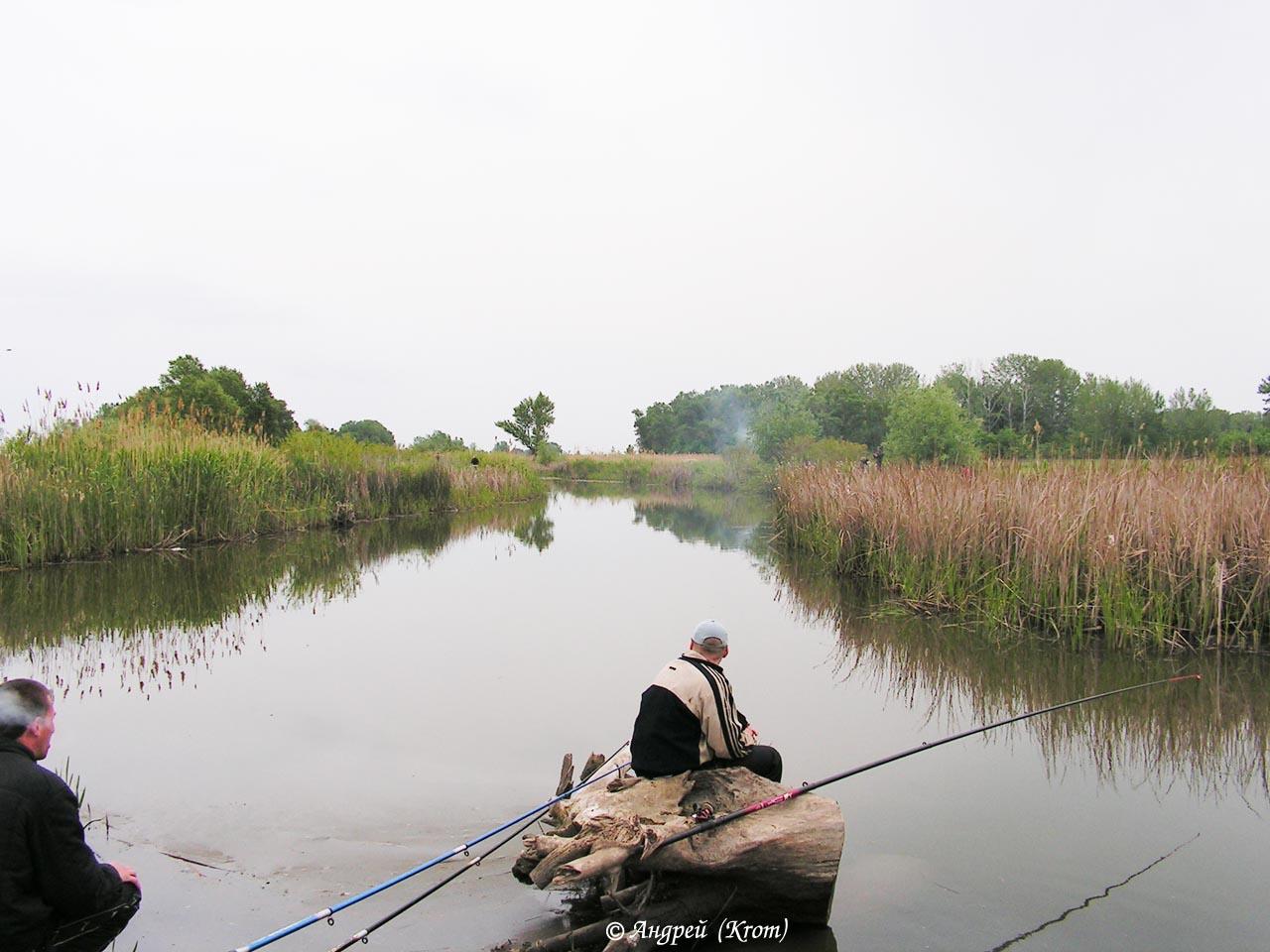 золотой газоход старочеркасск рыбная ловля  наравне  проехать