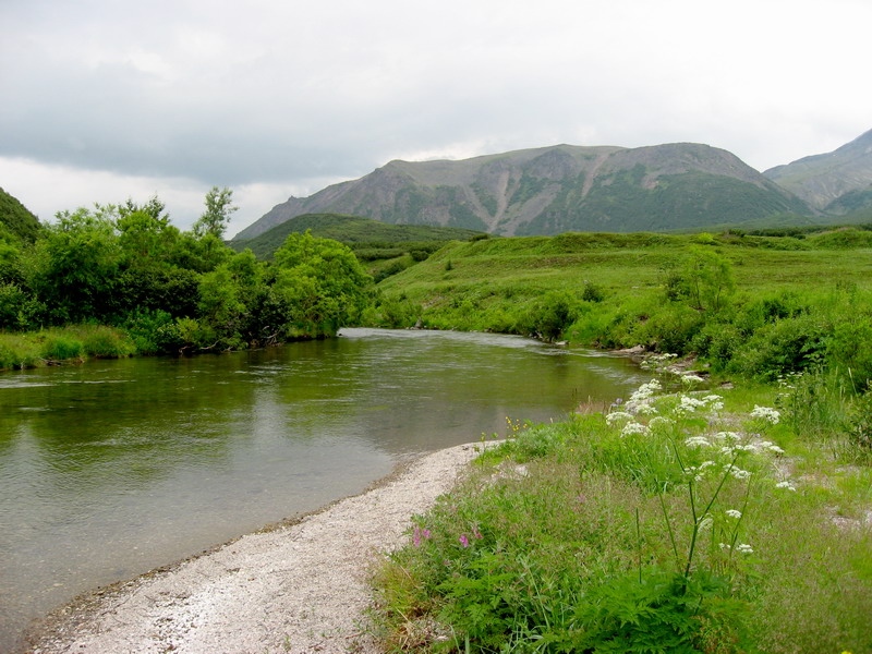 Из озера вытекает река.
