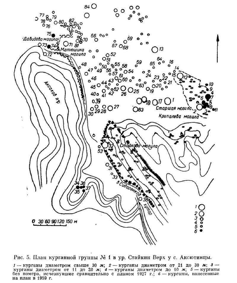 Схема из книги Ильинской В.А.